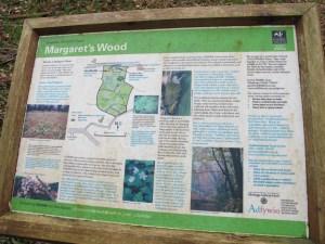 Margaret's Wood