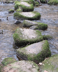 Stepping stones across the White brook