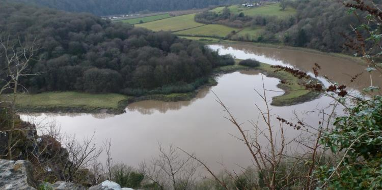 Meanders in the Wye below Wintour's leap